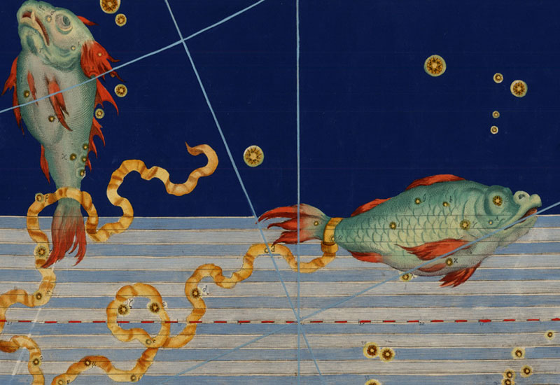 Ugehoroskop Fisken